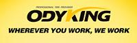 Информация о шинах Odyking