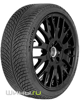 205/55 R17 Michelin Pilot Alpin 5